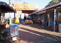 道の駅なんごうの写真・動画_image_162595