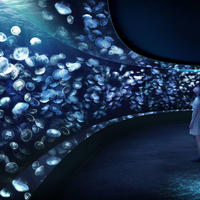 新設する横幅(湾曲した観覧可能な部分の長さ)約14mのミズクラゲの水槽 イメージ