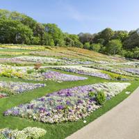 里山ガーデン イメージ
