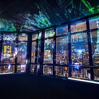展望台の窓に映し出される世界中のランドマーク