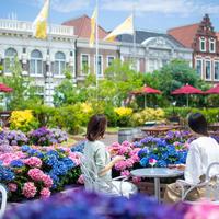 花の広場 イメージ