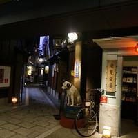 お好み焼 きじ 梅田スカイビル店の写真・動画_image_101386