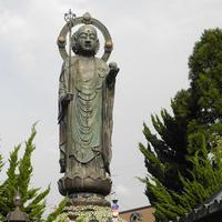 木之本地蔵院の写真・動画_image_10889