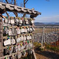 八幡山ロープウェーの写真・動画_image_11817