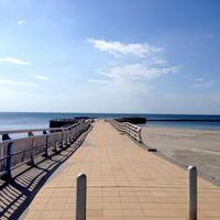 江口浜海浜公園の写真・動画_image_12848