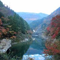 祖谷渓の写真・動画_image_13733