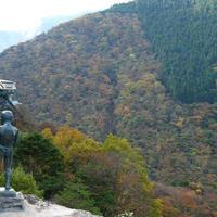 祖谷渓の写真・動画_image_13735