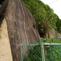 豊国神社の写真・動画_image_142440