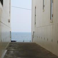 bills 七里ヶ浜の写真・動画_image_145467