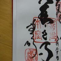 善光寺の写真・動画_image_155380