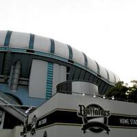京セラドーム大阪の写真・動画_image_16254