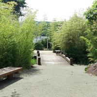 竹林園の写真・動画_image_162628