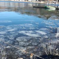 河口湖の写真・動画_image_175405