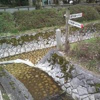 水分れ公園の写真・動画_image_1878