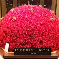 帝国ホテルの写真・動画_image_245954
