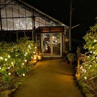 箱根強羅公園の写真・動画_image_266418