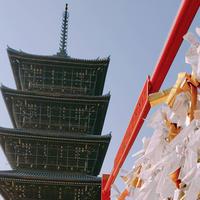 善通寺の写真・動画_image_271727