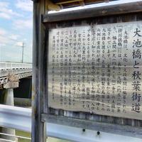 掛川城天守閣の写真・動画_image_272294