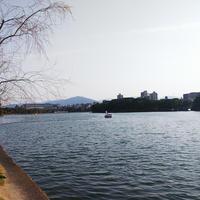 大濠公園の写真・動画_image_353598