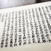 正覚寺の写真・動画_image_35709