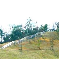 イモ山公園プールの写真・動画_image_36259