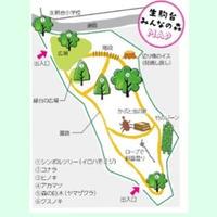 生駒台みんなの森の写真・動画_image_36274