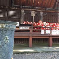 少林山達磨寺の写真・動画_image_37182