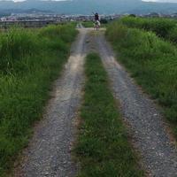 トロッコ亀岡駅観光案内所の写真・動画_image_40257
