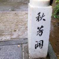 秋芳洞の写真・動画_image_418462