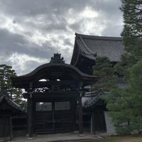 妙心寺の写真・動画_image_419219