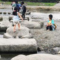 鴨川デルタの写真・動画_image_45841