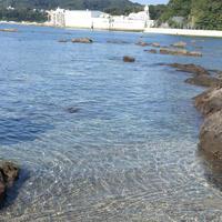 天神島臨海自然教育園の写真・動画_image_46134