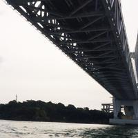 遊覧船はつひ丸の写真・動画_image_49979