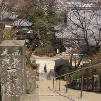 少林山達磨寺の写真・動画_image_51592