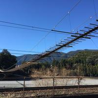 塩郷の吊り橋の写真・動画_image_58490