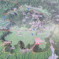 大観峰展望所の写真・動画_image_60062