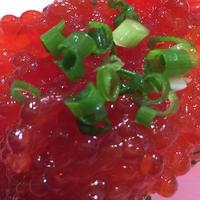 根室花まる JRタワーステラプレイス店の写真・動画_image_60336