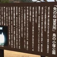 鳥の小塚公園の写真・動画_image_60717