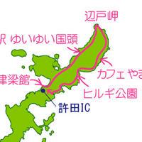 東村ふれあいヒルギ公園の写真・動画_image_6110