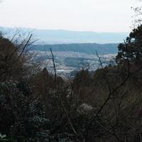 宝山寺の写真・動画_image_62328