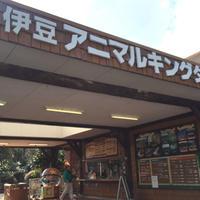 伊豆アニマルキングダムの写真・動画_image_67463