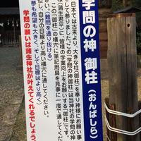 蒲生神社の写真・動画_image_71034