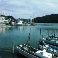 浜名湖の写真・動画_image_7519