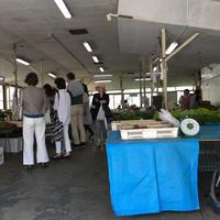 鎌倉市農協連即売所の写真・動画_image_79362