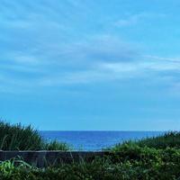 稲村ケ崎海浜公園の写真・動画_image_80822