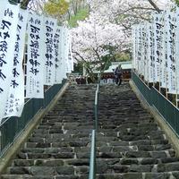 石切劔箭神社の写真・動画_image_8910
