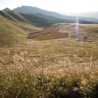 曽爾高原の写真・動画_image_8922