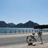 大久野島 サイクリングロードの写真・動画_image_111200