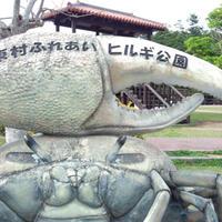 東村ふれあいヒルギ公園の写真・動画_image_113117