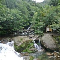 白谷雲水峡の写真・動画_image_118195